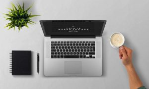 Stampin Up Onlineshop  Produkte oder Katalog bestellen